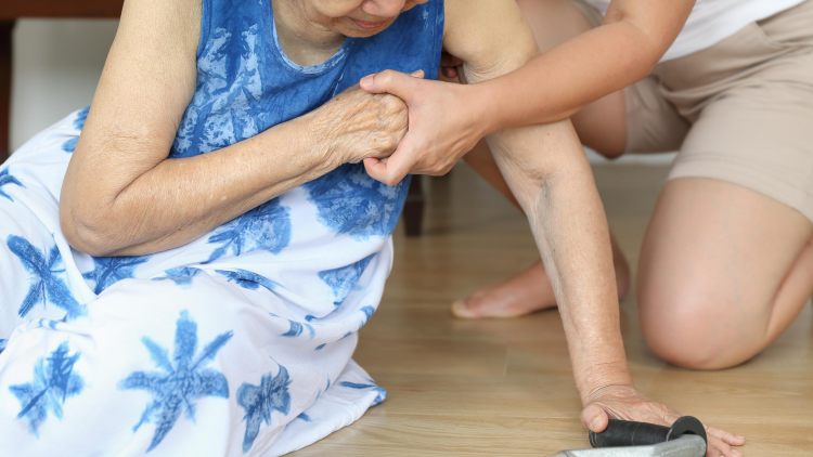 Healthy Living Blog – Tips to Prevent Falls at Home for Older Adults
